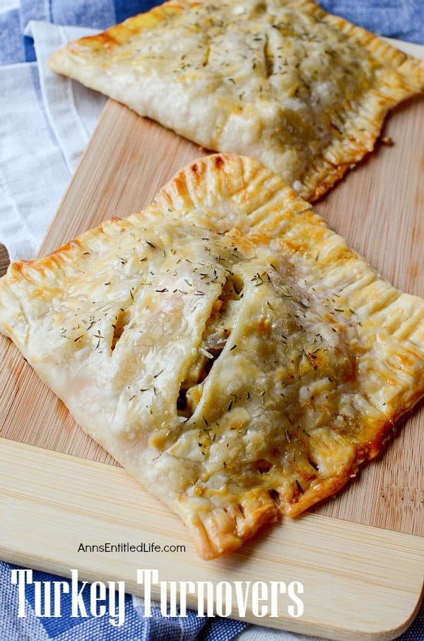 Using pre-made pie crusts and leftover turkey, these Turkey Turnovers are simple, delicious and can easily go into a lunchbox for a workplace meal.