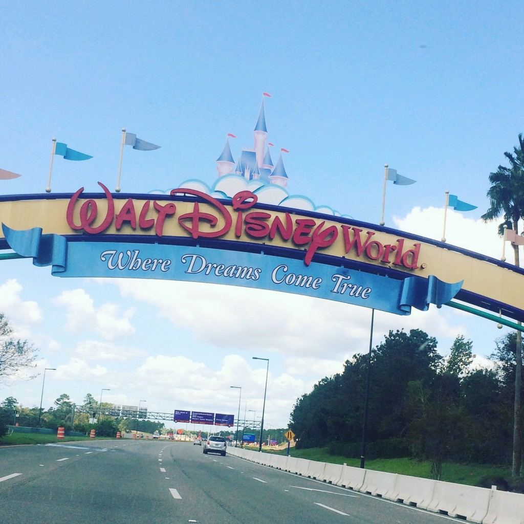 Hiring a Disney Vacation Planner can help you find the best deals on Disney tickets and experiences, and help you make your Walt Disney World vacation magical and hassle-free