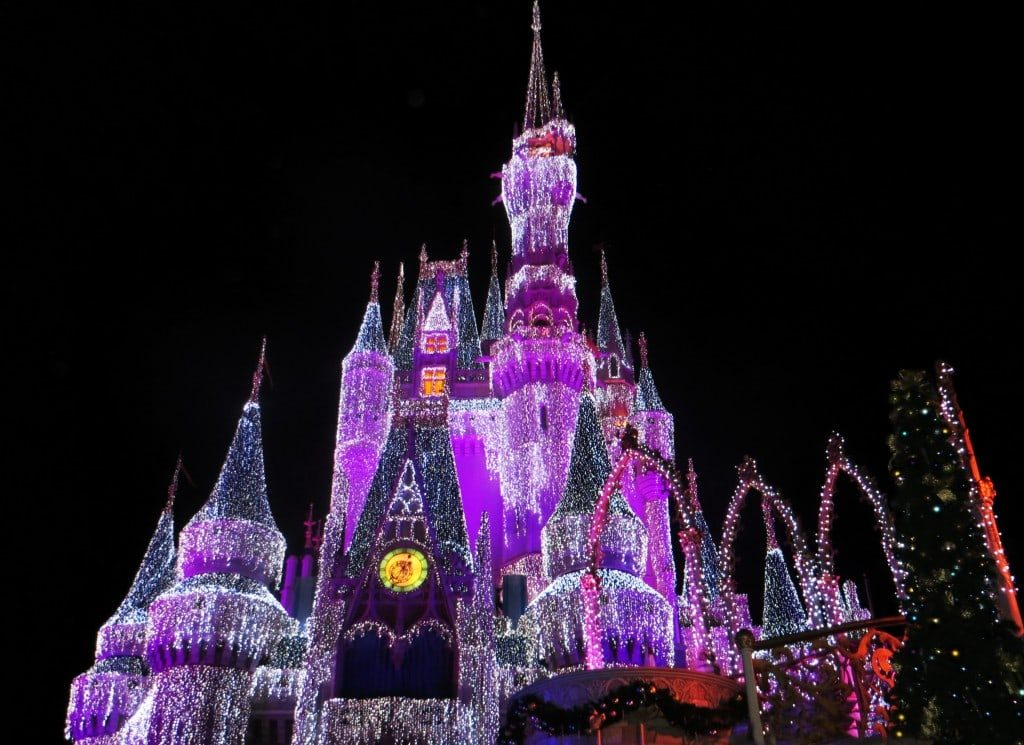 Hiring a Disney Vacation Planner can take the stress out of planning your Disney World vacation, helping you better enjoy the magical experience.
