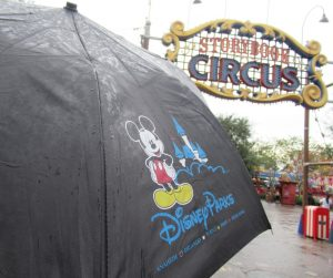 Worried about being at Disney World in the rain? Even if the weather at Disney World is not cooperating, you can still have a great time. These tips will help you navigate the Disney Parks in the rain