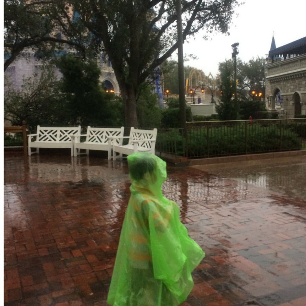 A poncho is a good item to have handy if you you know you may be experiencing rain at Walt Disney World.