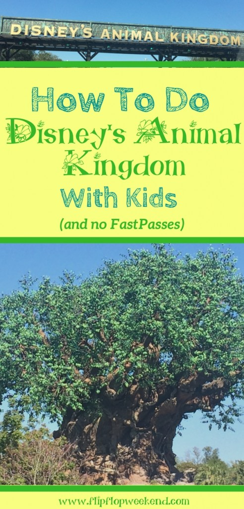 If you find yourself at Walt Disney World's Animal Kingdom with kids and without FastPasses, there are still plenty of attractions to try! Check out these tips and ideas on how to still have a wild day! #WDW #DisneyParks