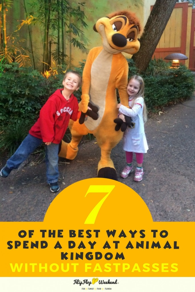 If you are planning a day a Disney's Animal Kingdom, with kids, this post will guide you through some of best rides, attractions and activities for kids...none of which require a fastpass. #wdw #disneytips