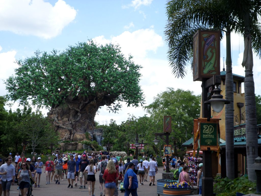Walt Disney World's Animal Kingdom Tree of Life