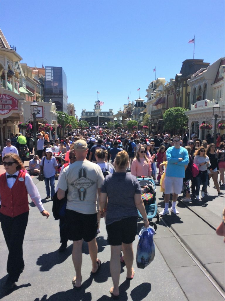 The average person may walk over 10 miles a day at the Magic Kingdom. It's important to have good footwear. This post features some of the best shoes for walking at Walt Disney World.