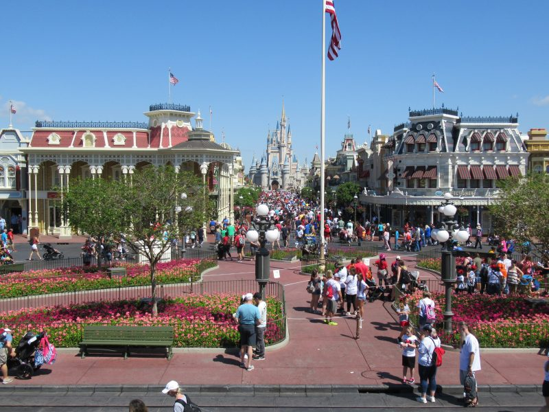 Not To Miss Entertainment on Main Street USA