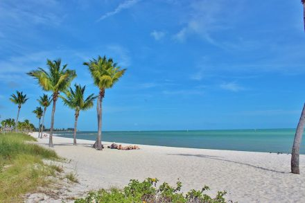 The Florida Keys are widely known as a vacation destination for fisherman, sunbathers, and college kids on spring break. Certain areas definitely cater to those crowds. But did you know that the Keys can also make a wonderful destination for a family vacation? There are plenty of activities you can do as a family, even with small children.